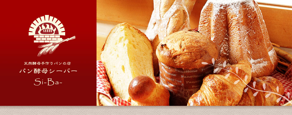 パン酵母シーバー
